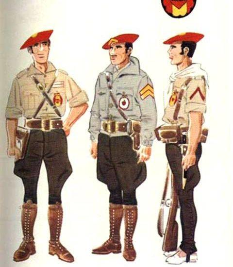 Caballeria Requeté (Columna de Redondo)