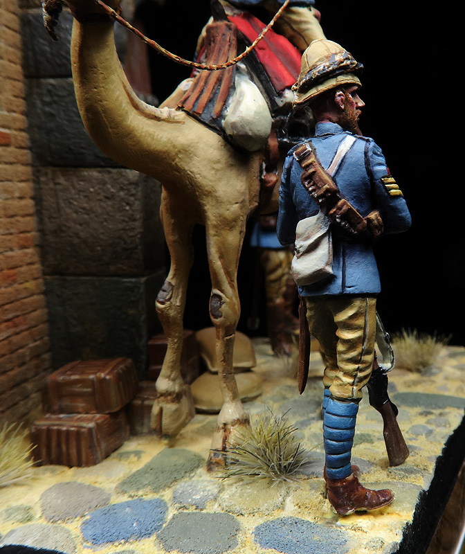 British Camel Corps