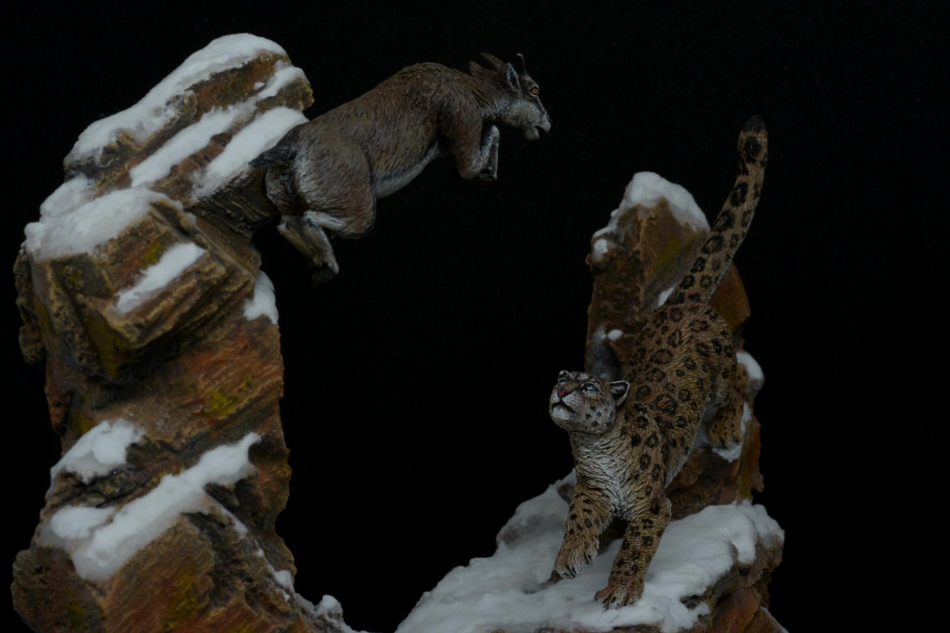 Caza de Leopardo de las nieves